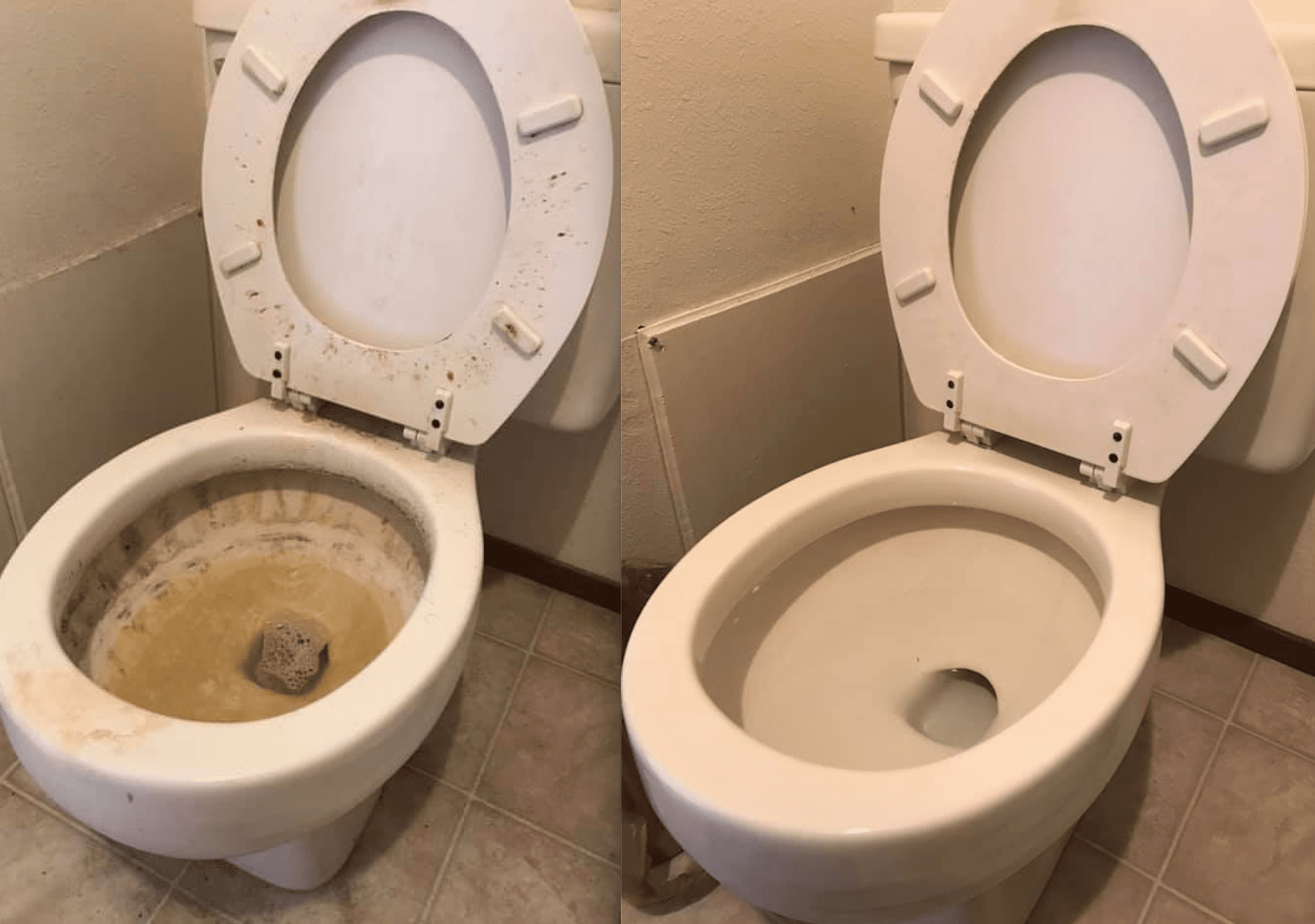 Toilet Cleaning Before and After Snohomish County, WA