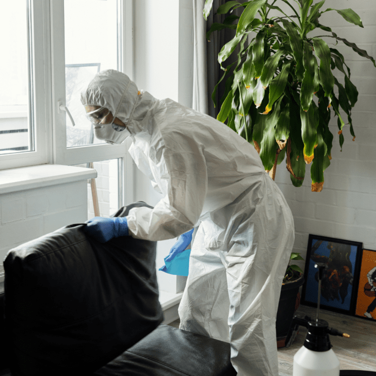 safe house cleaning