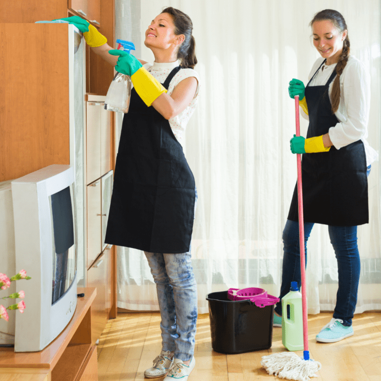 house cleaning evertt